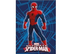 Edredón Nórdico infantil Spider-man 1
